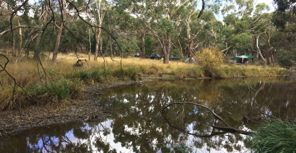 Boar Gully Campground Brisbane Rangers