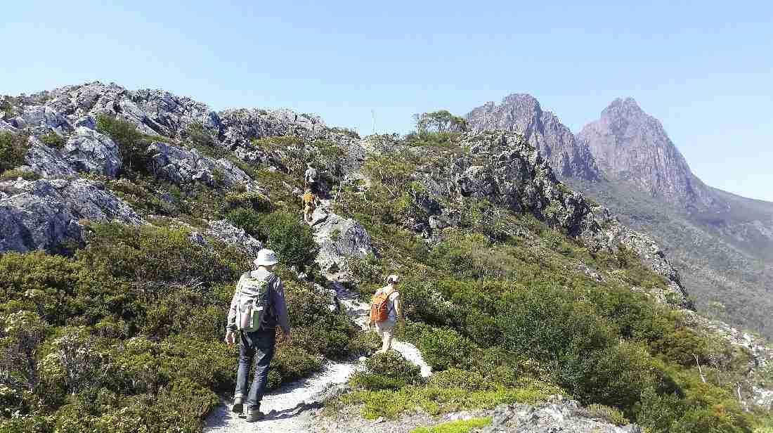 Hiking Safari in West Tasmania