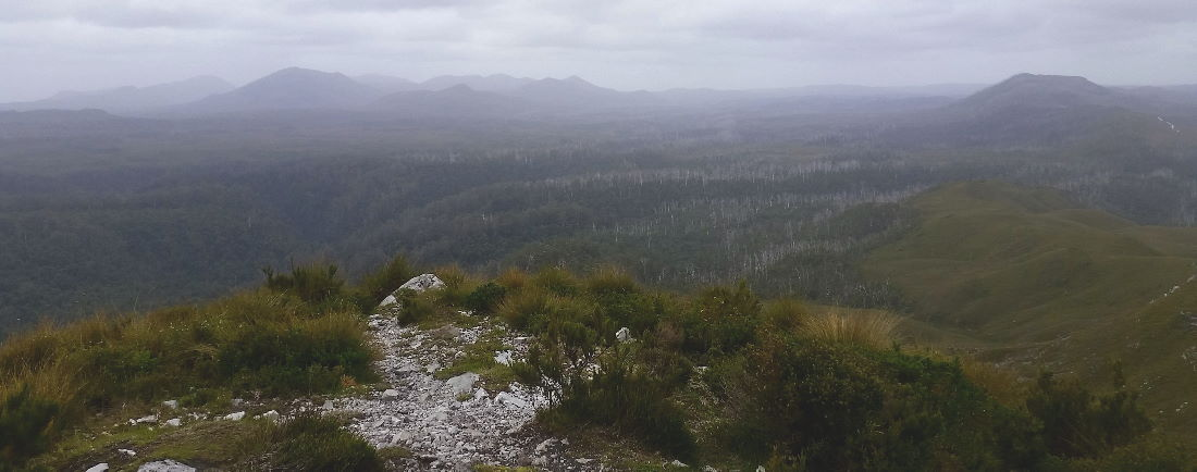 View from on top of Mount Donaldson