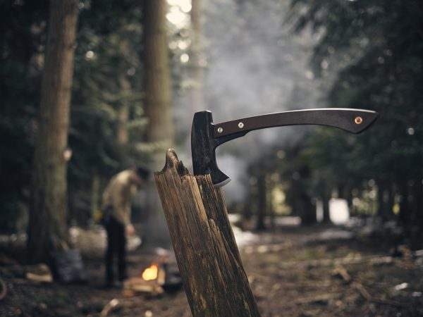 Hatchet Camping Axe in log