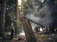 Machete in wood