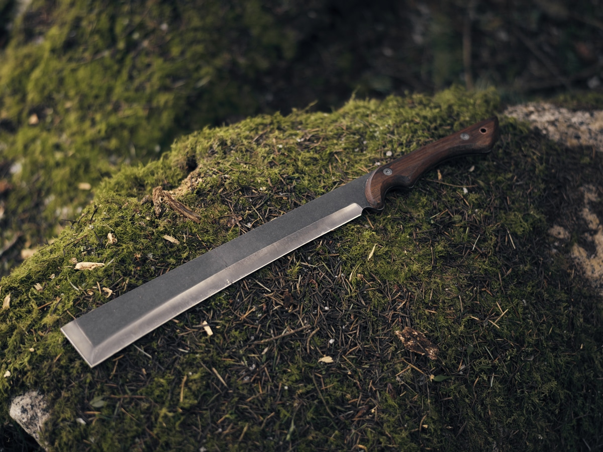 Machete on mossy rock