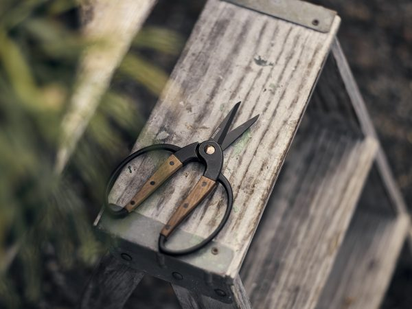 Ambidextrous Camping Scissors on Table on bench