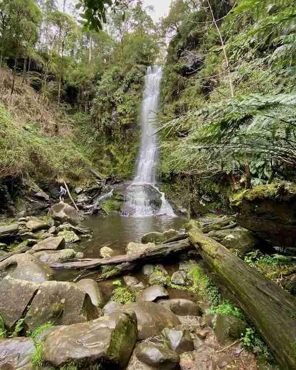 Erskine Falls from below