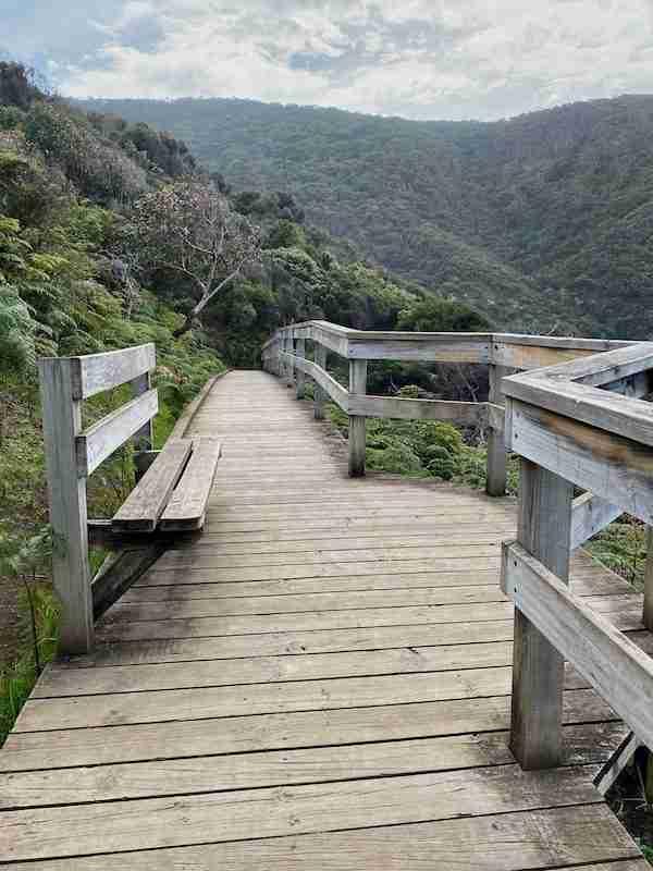 Board walk on the way to Sheoak Falls