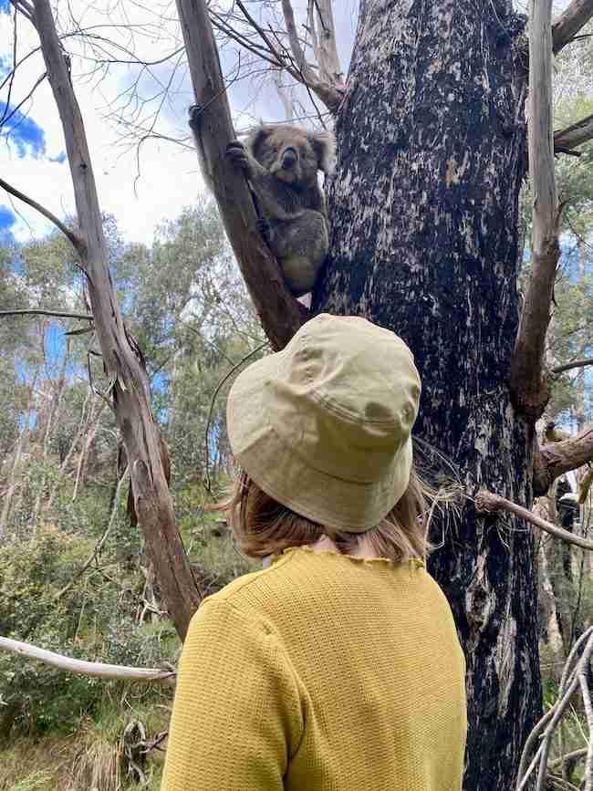Eva with a Koala