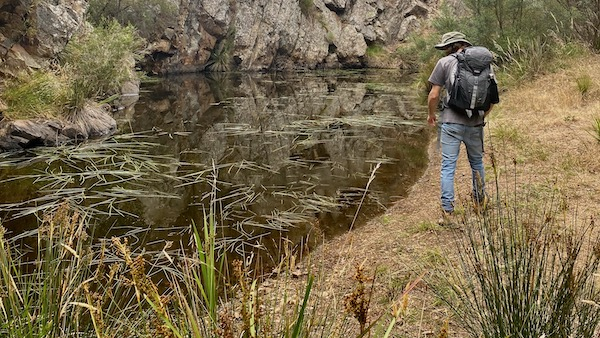 Pond near Steiglitz