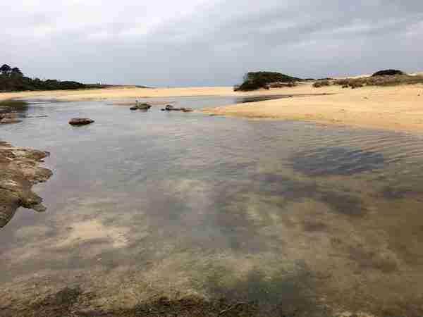 Lagoon Beach campground - 1