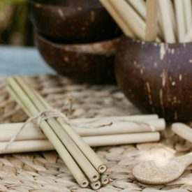 Bamboo Straws Eco Green Spirit