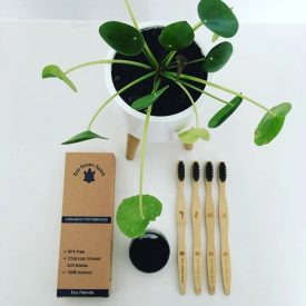 Organic Bamboo Toothbrushes Set of 4