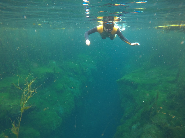 Snorkeling at Piccaninnie Ponds