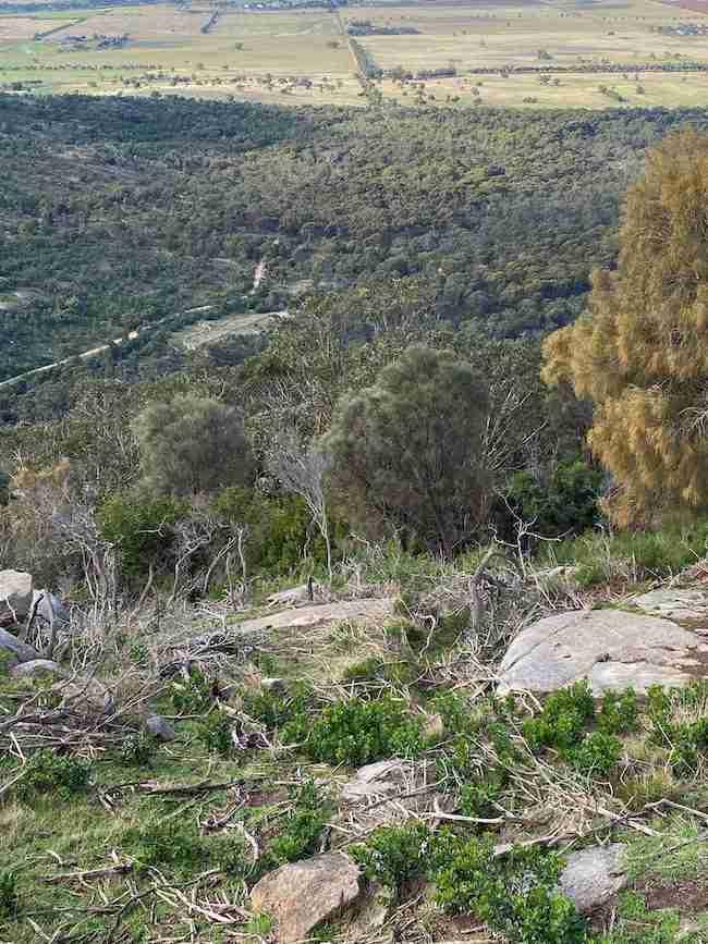 View from Flinders Peak at the You Yangs