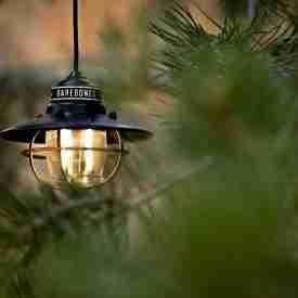 Hanging Antique Bronze Steel Lantern among trees