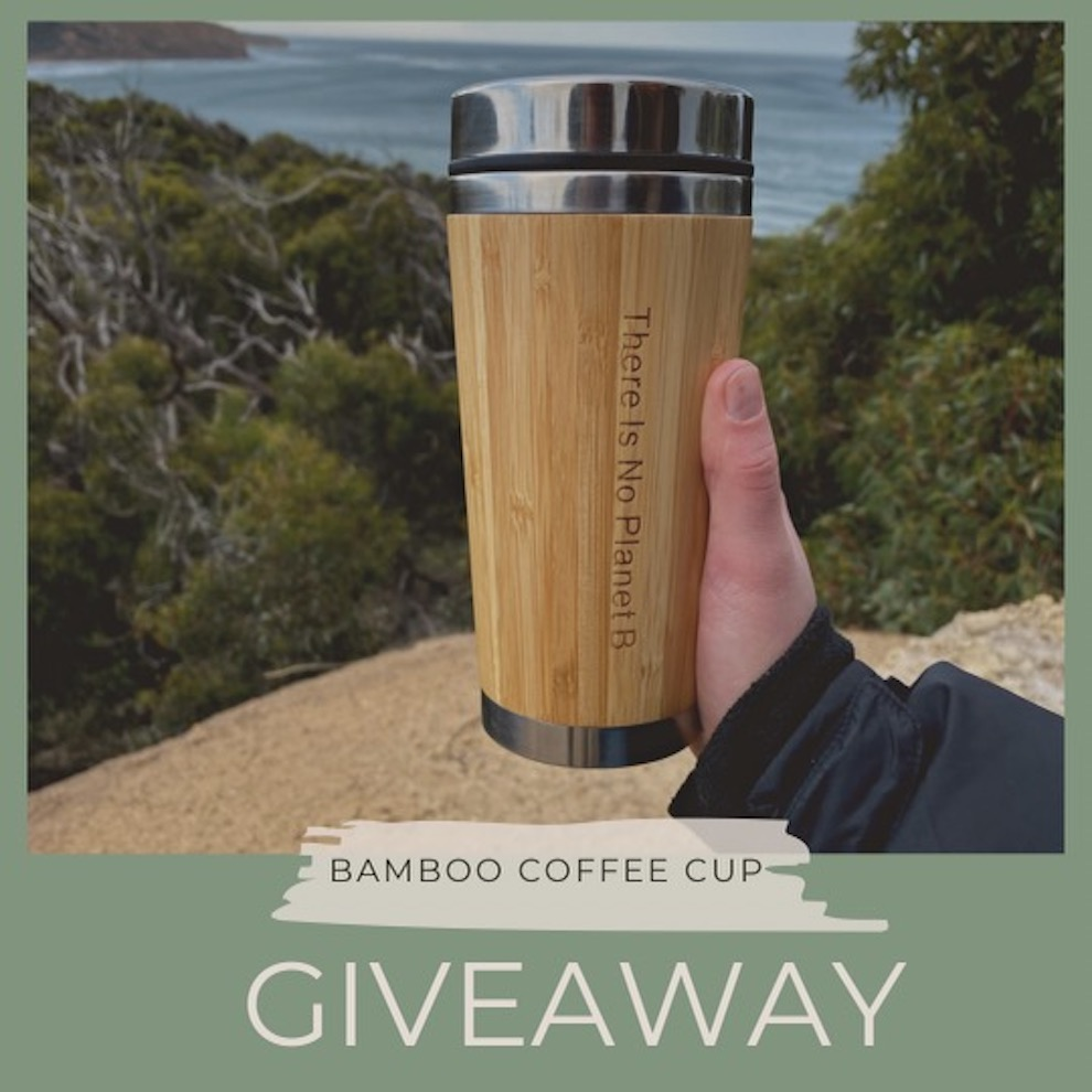 Bamboo Coffee Cup GIVEAWAY